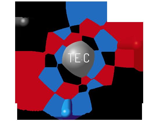 logo de Tout en couleur le spécialiste en remise en peinture électrostatique sur site
